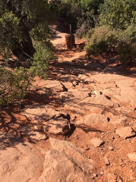 Trail is with marked with caged rock trail markers