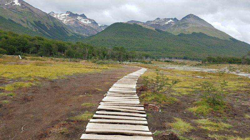 Walkway across a peatbog (turbal)