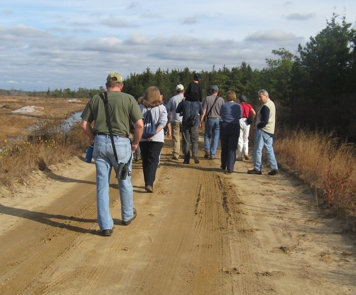 Hikers heading toward Rome on the bog trail