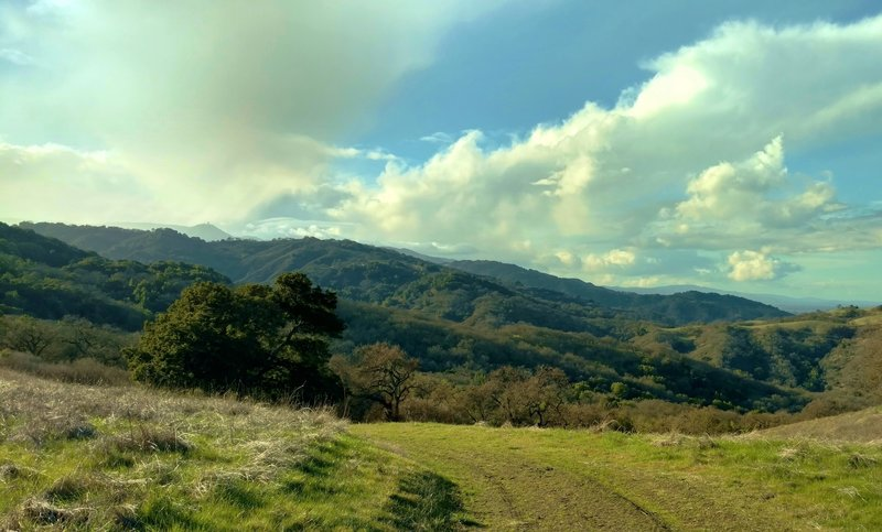 The Santa Cruz Mountains and Mt. Umunhum in the distance (left of center), from the high point of Serpentine Loop Trail, looking west