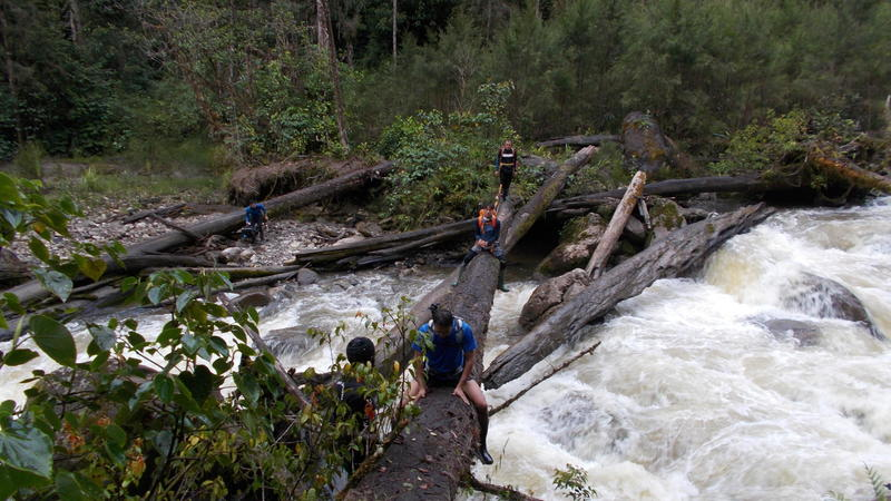 cross the river with tree bridge - trekking carstensz pyramid