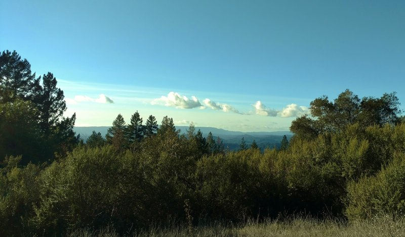 Looking out over the Santa Cruz Mountains from high on Sulphur Springs Road.