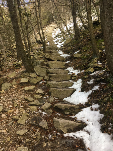 Stone steps leading up mountain.