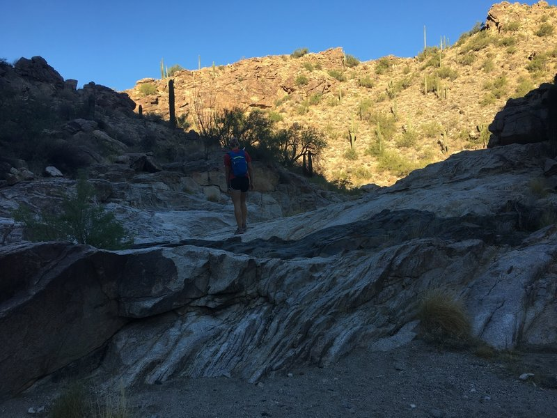 Making our way through the bottom of the canyon