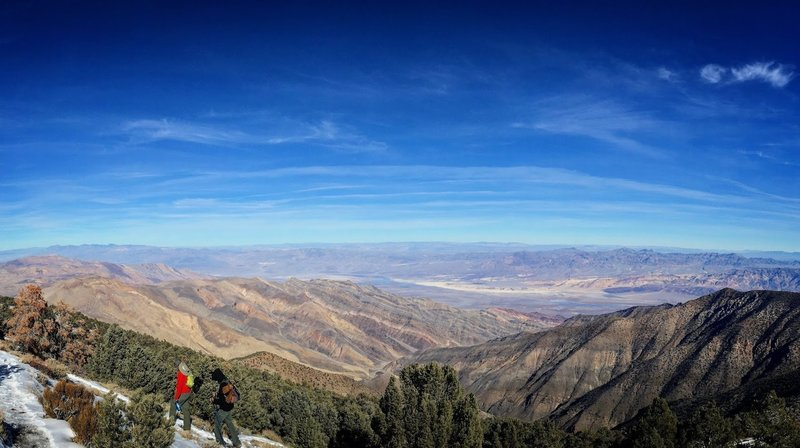 Wildrose Peak trail offers day hikers a magnificent view of the valley floor 9,000' below.