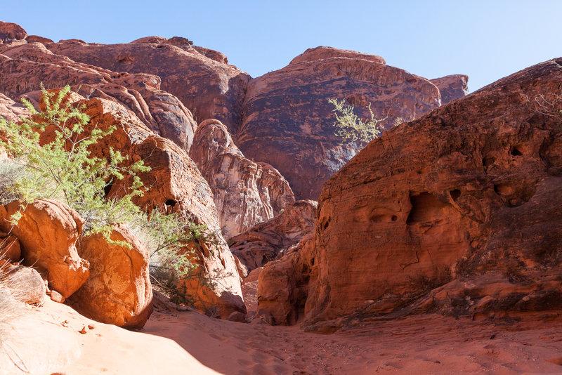 Sandy Fire Canyon Wash Trail