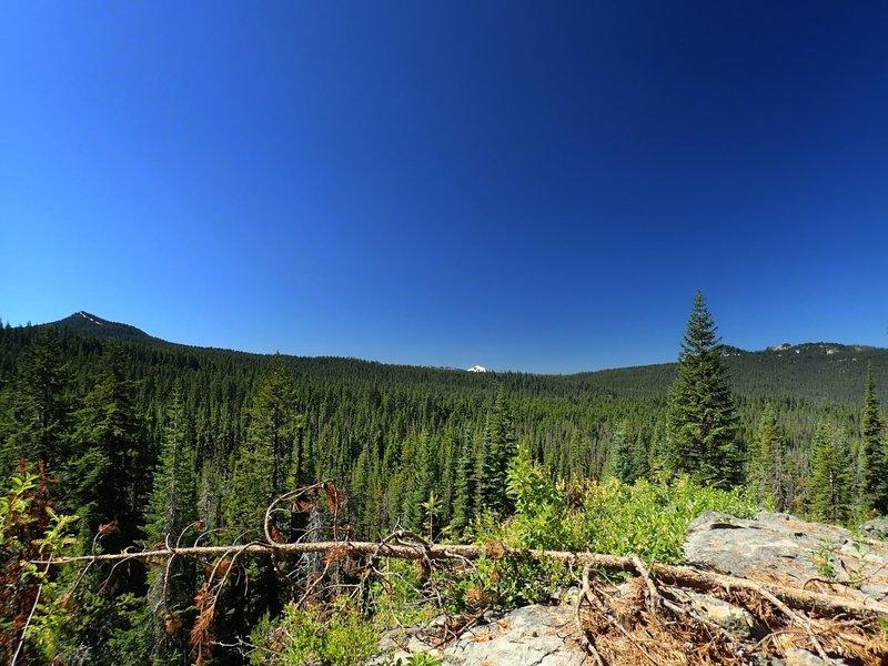 Mount McLoughlin from the Stuart Falls Trail