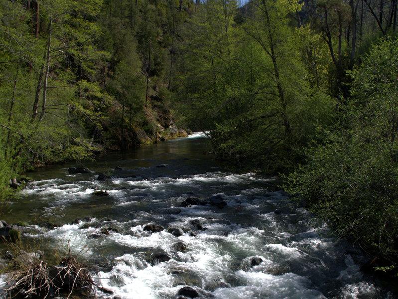 Briggs Creek