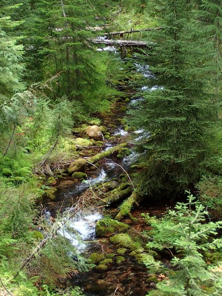 Tolo Creek