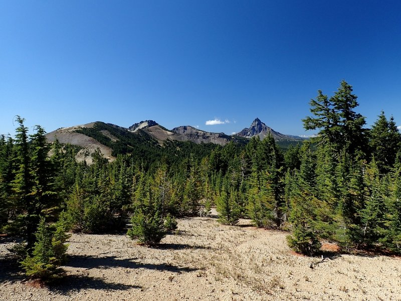 Mount Thielsen from along the trail.