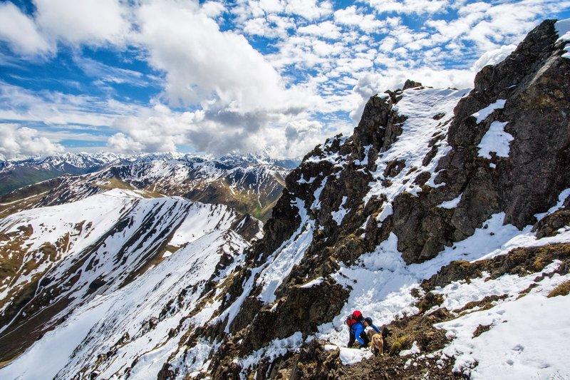 The east face of South Pioneer Peak just below the summit.