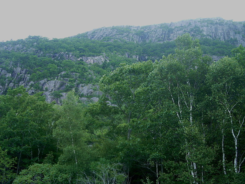 The Precipice and Orange and Black Trail - Acadia National Park