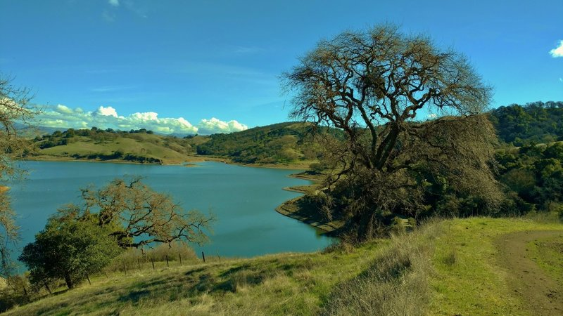 Calero Reservoir near the dam, as seen from Cottle Trail.