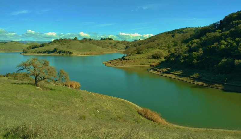 Calero Reservoir from Cottle Trail.