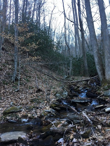 Small waterfall along Presley Cove trail