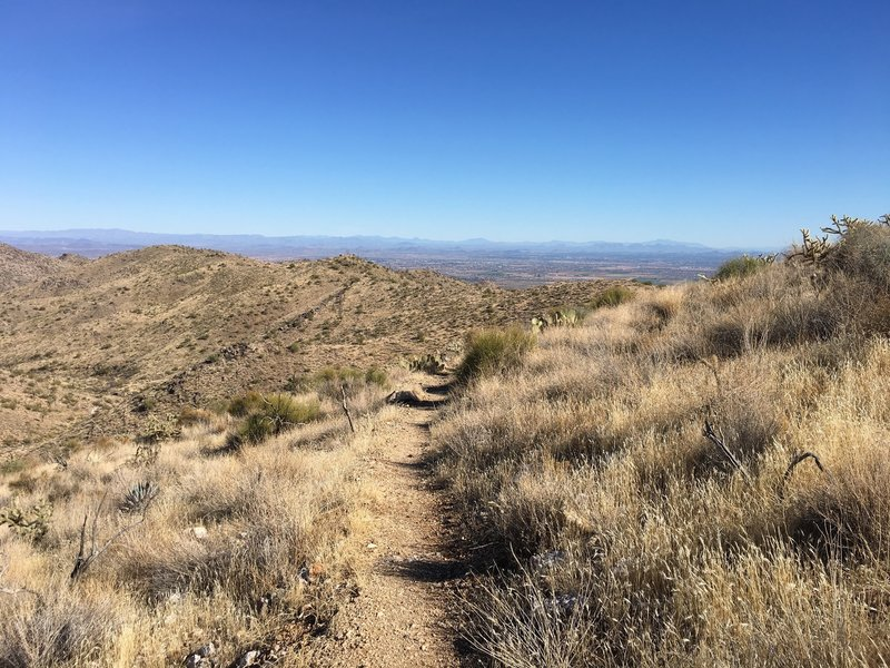 The well maintained singletrack trail