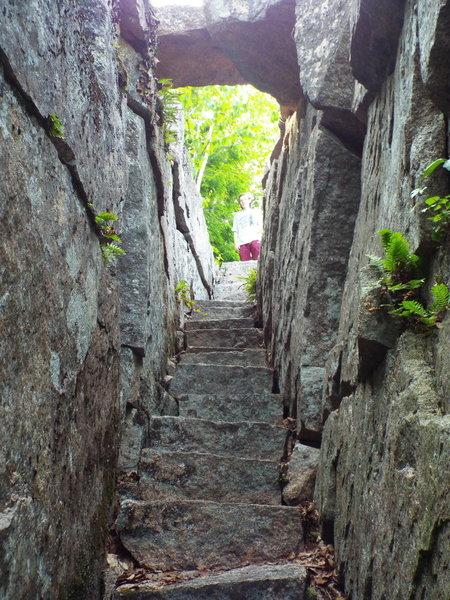 The Passage - Homans Trail - Acadia National Park