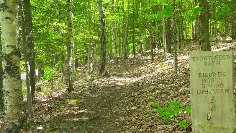 Stratheden Path Trailhead - Acadia National Park