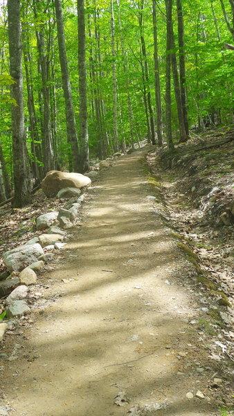 Stratheden Path - Acadia National Park