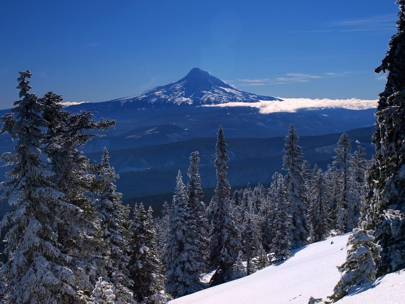 Mount Hood from Mount Defiance in winter