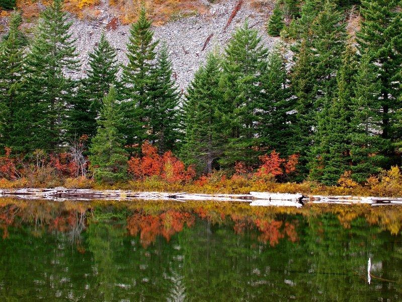 Fall at Warren Lake