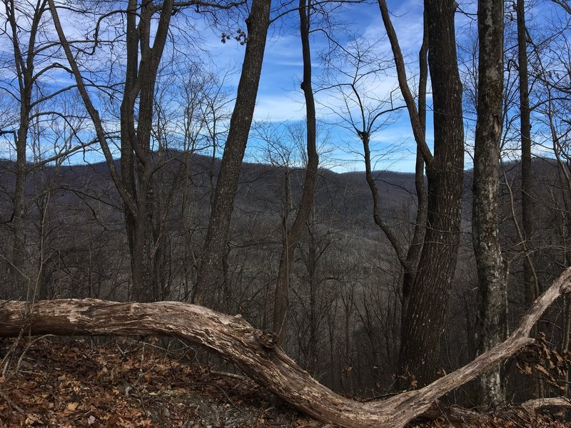 View from Bennett Gap/Coontree Loop Trail.