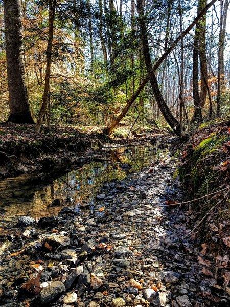 North Prong of Hannah's Creek