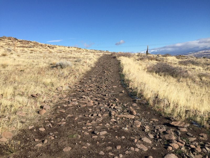 Typical section of trail that is wide but rocky