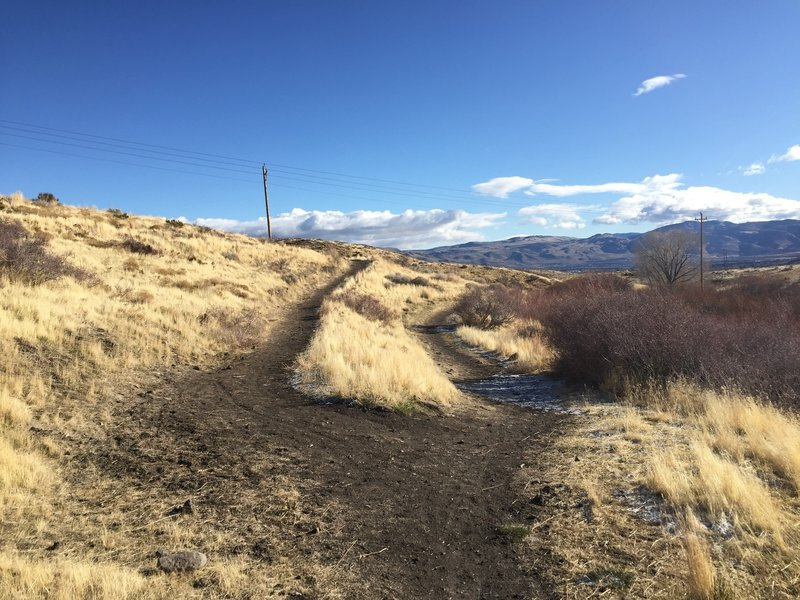 Sharp bend in the Upper Loop trail. Continuing west up the trail takes you up onto the Ballardini Ranch Spur
