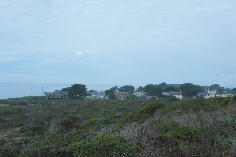 Looking back at Moss Beach, you can see the homes that sit on top of the bluff.