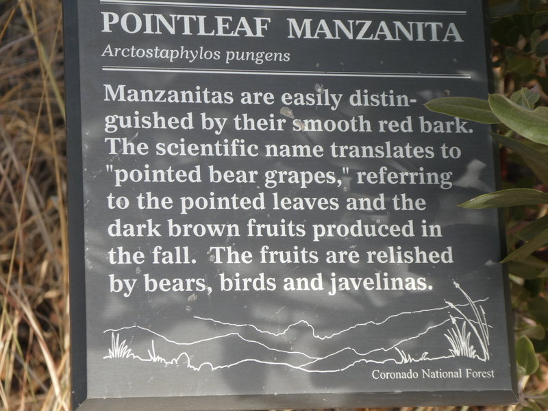 One of the many informational plaques along the trail