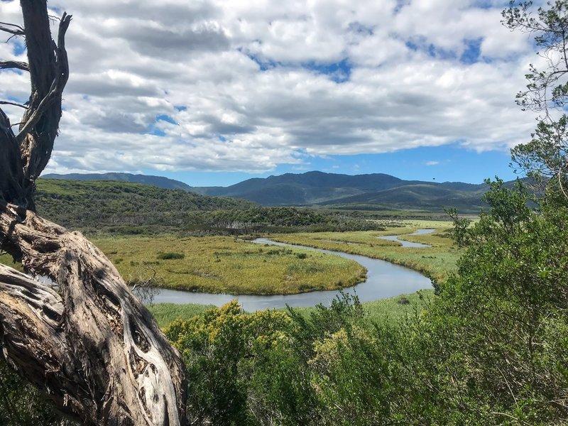 Darby River/Swamplands