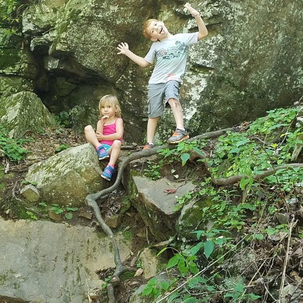 Kid friendly trail. Here they are enjoying themselves.