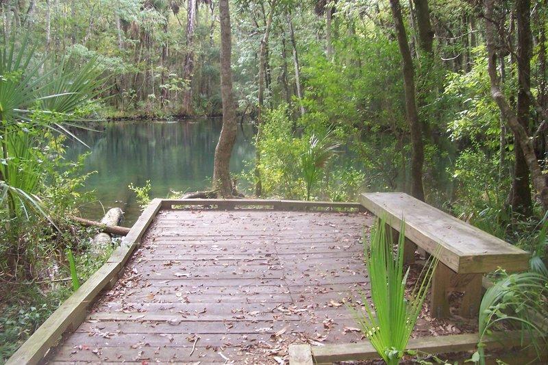 Shepherd Spring (Wakulla County, FL).