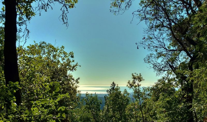 The Pacific Ocean can be seen through a break in the trees along Ridge Trail