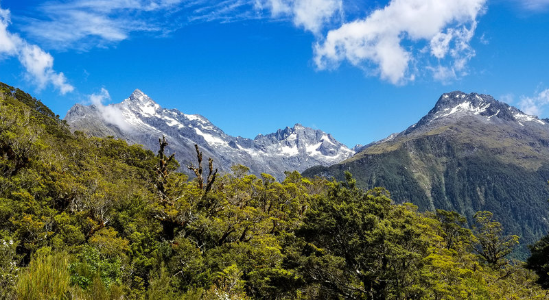 Ascending on the Key Summit Track, you have a magnificent view of the mountains across the Hollyford Valley