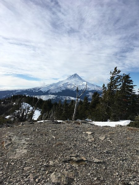 View of Mt. Hood from the top of Lookout Mountain. Plenty of panoramic views from the top. Well worth the trip up.