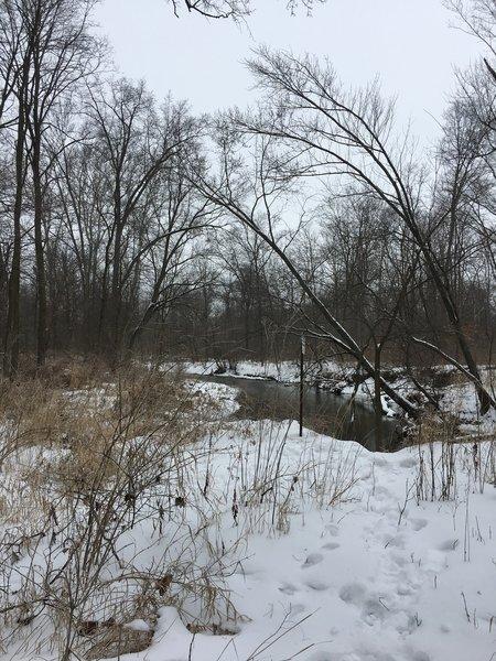 View of Cedar Creek