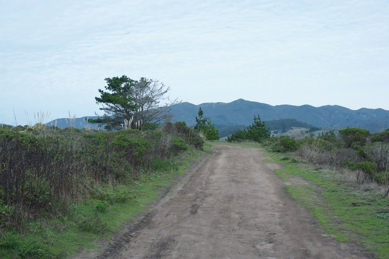 The dirt trail as it crosses the top. You can see the mountains to the east that rise above Half Moon Bay and Moss Beach.