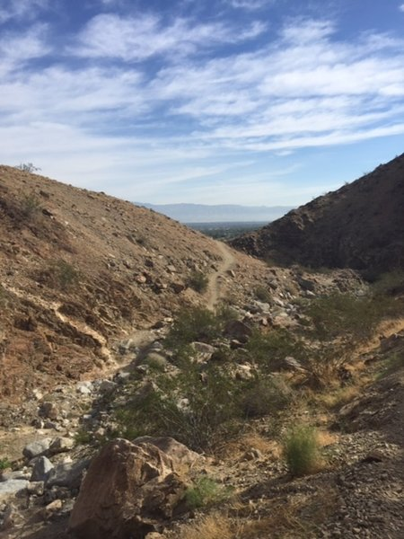 Looking east over Palm Desert with a view of some of the northern section of the trail.