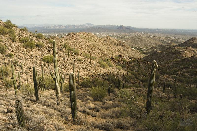 View from Sunrise Peak, Fountain Hills, AZ
