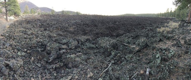 Lava field is pretty expansive!