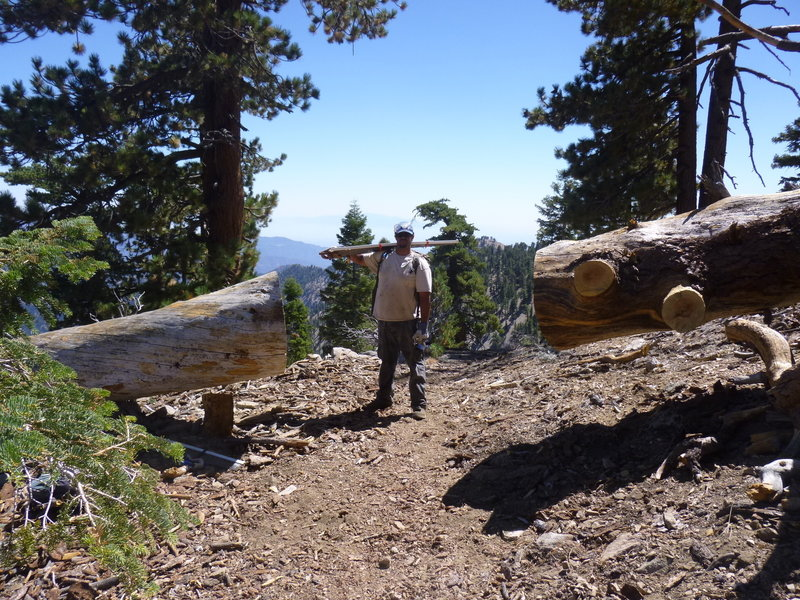 Cutting logs off trail in wilderness with crosscut saw