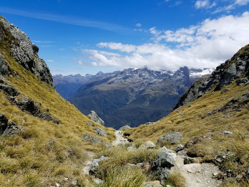 The steep but rewarding ascent on Conical Hill Track
