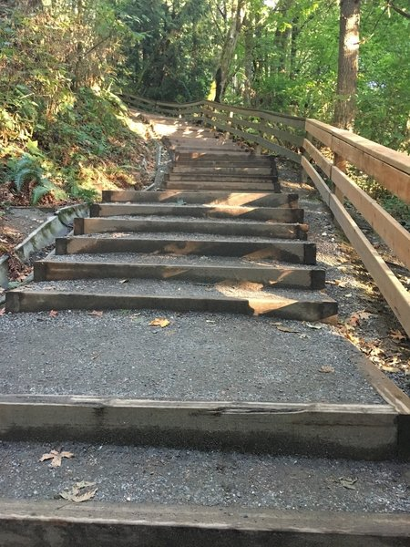 The steepest part of the hike has stairs.