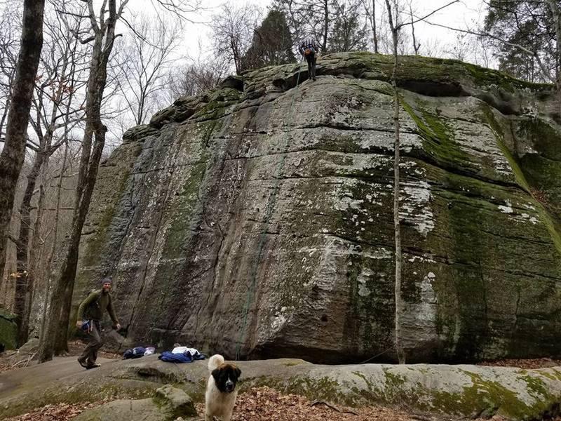A couple guys rock climbing. St Bernard was friendly!