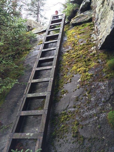 Ladders on steep ledges - Six Husbands Trail