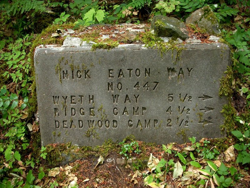 Junction with the Nick Eaton (Way) Trail