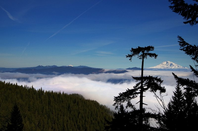 Mounts Rainier (L) and Adams (R) from the Gorton Creek Trail