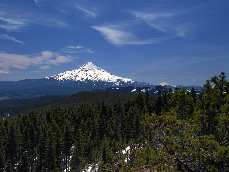 Mount Hood from Green Point Mountain